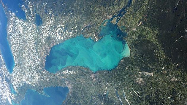 Fotos: Los lagos de Canadá se están volviendo 'gelatina'