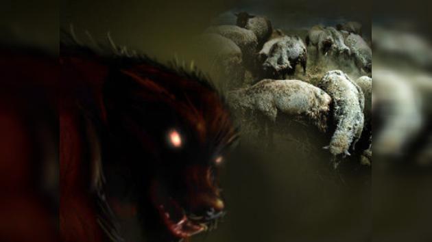 Un 'chupacabras' causa terror en una granja rusa