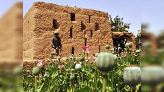 Podrían demandar a la OTAN por el fracaso de la misión en Afganistán