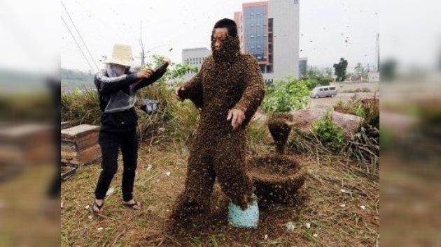 Fotos de intento de récord: 33 kilos de abejas se posan sobre cuerpo de un apicultor chino