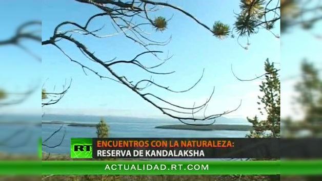 ENCUENTROS CON LA NATURALEZA : RESERVA DE KANDALAKSHA