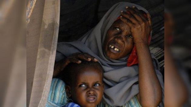 WWF pone sobre la mesa ocho recetas para combatir el hambre en el mundo