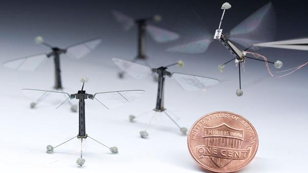 Video: El robot volante más pequeño del mundo emprende su primer vuelo