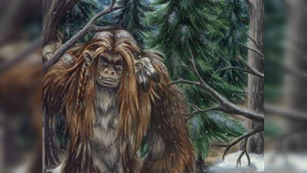 Oso, mono o yeti... ¿Qué atraparon en la república rusa de Ingushetia?