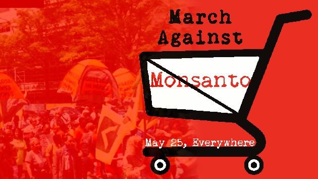 Ocupa Monsanto: la voz internacional contra los cultivos transgénicos