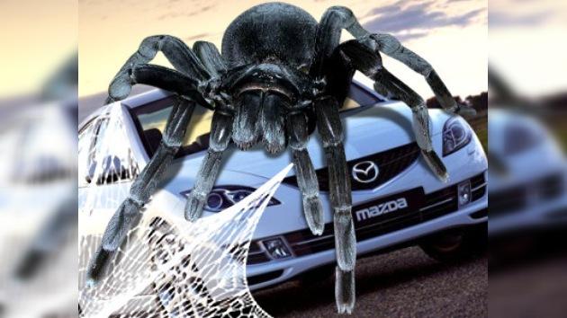 Mazda revisa 52.000 vehículos por culpa de telas de araña