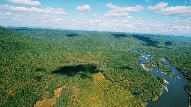 """WWF: """"Rusia es la única gran economía donde los biorrecursos aumentan"""""""