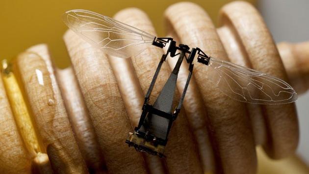 Abejas robot podrían polinizar los cultivos transgénicos de Monsanto