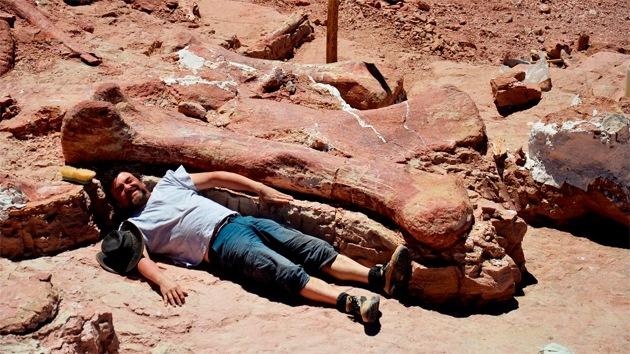 Hallan en Argentina el dinosaurio más grande del mundo