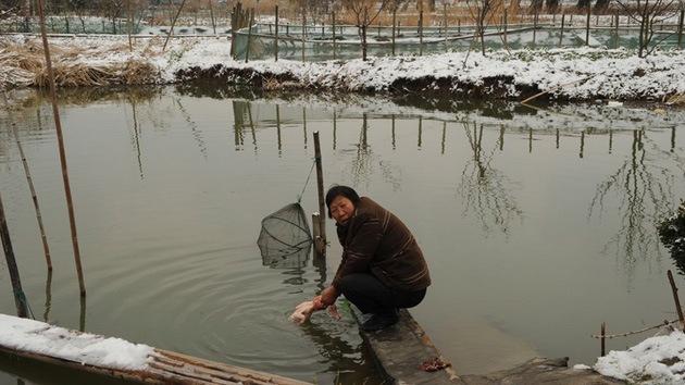 Aldeas del cáncer, una realidad reconocida oficialmente en China
