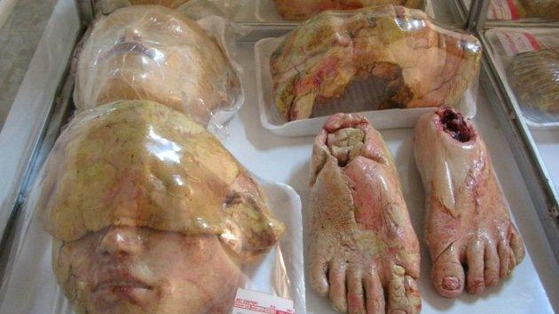 Fotos: Pan y circo se reúnen en una pastelería macabra