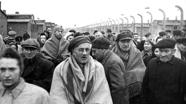 Descubren a un nazi del temido 31.º Batallón de castigo 'escondido' en el Reino Unido