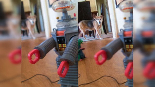 Inventan una cámara que enfoca después de sacar la foto