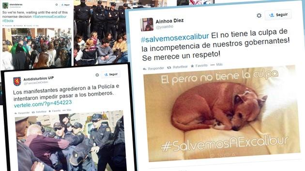 Video, fotos: Activistas intentan impedir que sacrifiquen al perro de la auxiliar con ébola