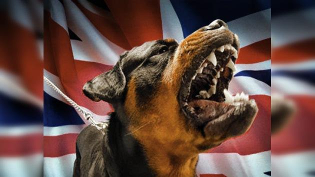 Ingleses restringen la longitud de la correa para perros