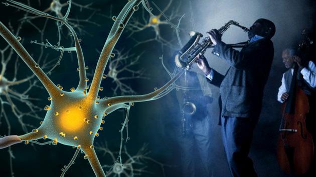 Video: El cerebro, ¿una 'caja de música'?