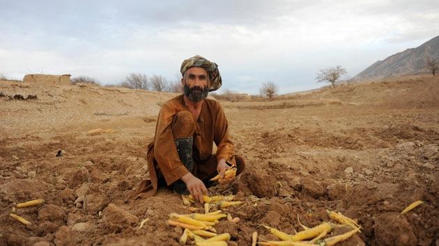 Nueva inversión de EE.UU. en Afganistán: ¿Adónde va en realidad ese dinero?