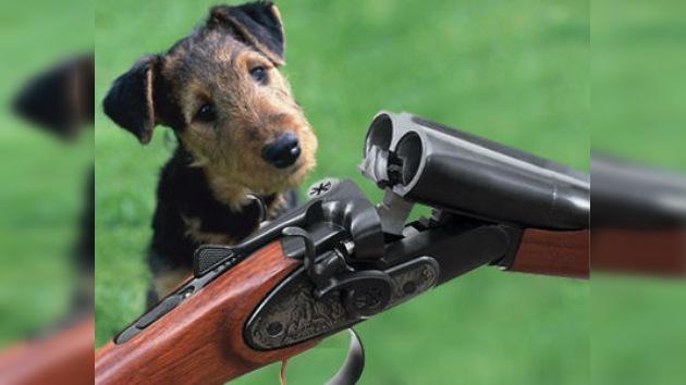 Un cazador estadounidense es herido de bala por su propio perro