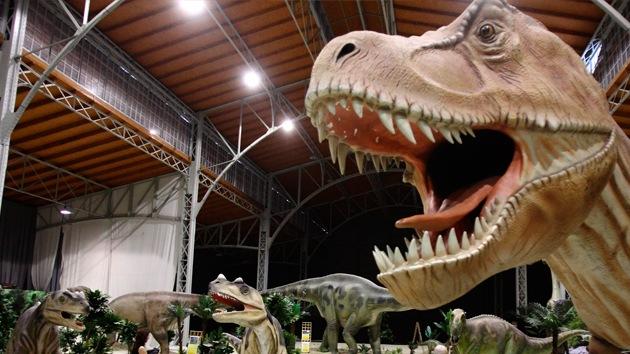 Zoológico contrata a un adolescente de 13 años como experto en dinosaurios