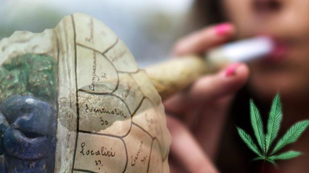 Foto: La marihuana 'desfigura' el cerebro de los jóvenes