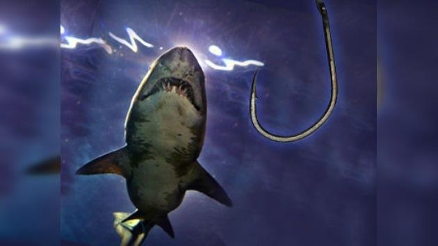 Unos pescadores creen haber cazado al 'tiburón asesino' ruso