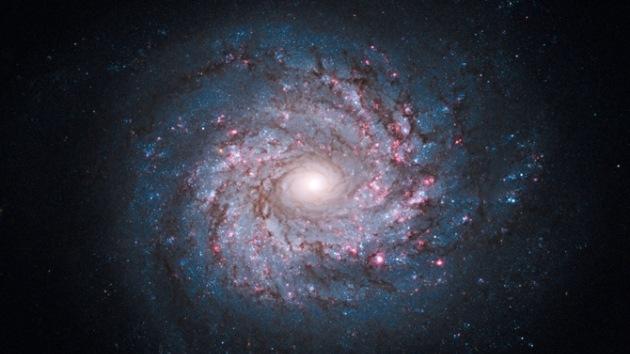 Mayor descubrimiento de astrofísica: Captan ondas causadas por expansión del Universo tras Big Bang