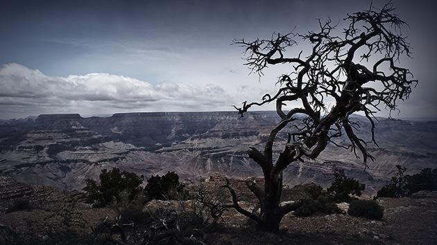 """Estudio: La peor """"megasequía"""" en los últimos 2.000 años amenaza a EE.UU."""