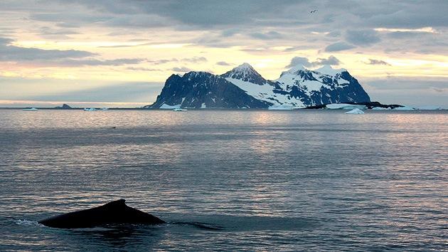 Los sonidos 'extraterrestres' de la Antártida