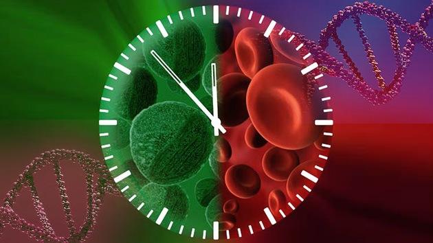 Científicos del Reino Unido logran regenerar un órgano vivo por primera vez en la historia