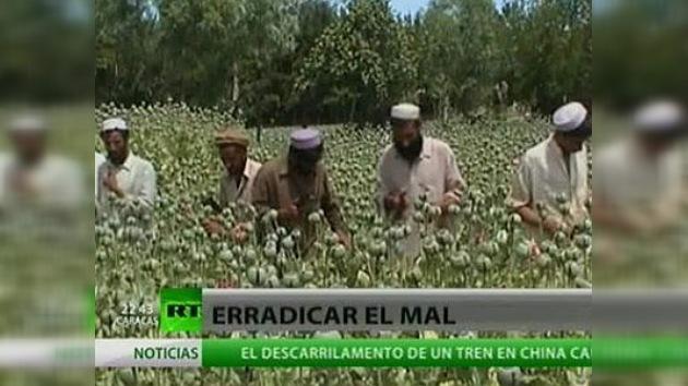Rusia entrega a EE. UU. una lista de presuntos capos de la droga afganos