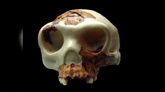 Los seres humanos, antiguos caníbales