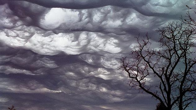 Una nueva variedad de nubes busca su reconocimiento oficial