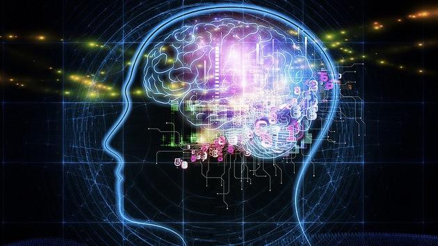 Un científico dona su cerebro... a los robots