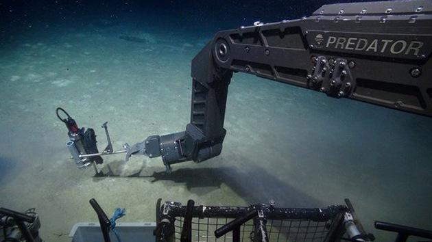 Encuentran vida en volcanes submarinos a 6.500 metros de profundidad