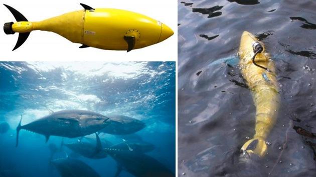 EE.UU. piensa fortalecer su seguridad con un nuevo robot espía con aspecto de atún