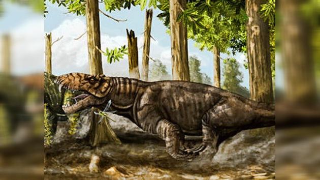 Hallan en Sudamérica un fósil de lagarto siberiano
