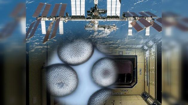 Estación Espacial Internacional, ¿a punto de deshacerse?