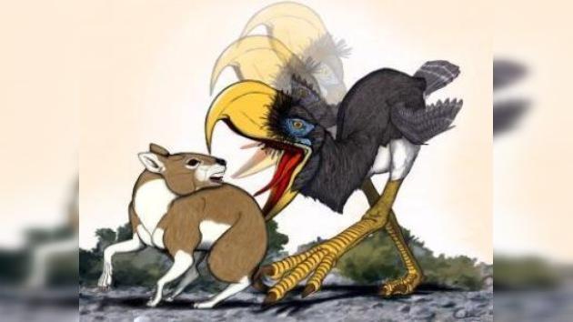 La danza mortal de las 'aves del terror'