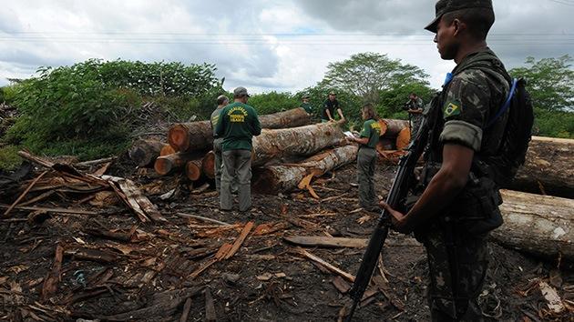 Cruzada militar en Brasil para atajar la tala ilegal que amenaza a la tribu de los awás