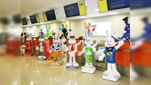 Marcha de conejos y fotoespíritu de la aviación en aeropuerto moscovita