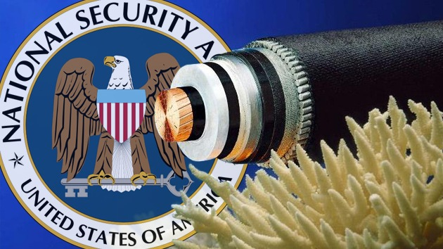 La NSA espió un cable submarino de telecomunicaciones Europa-Asia