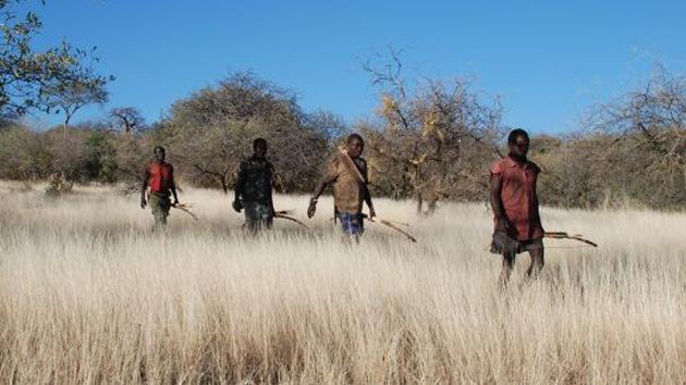 Antropólogos comparan a los seres humanos con depredadores