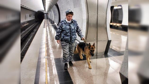 Los perros ayudan a combatir el terrorismo en el metro de Moscú