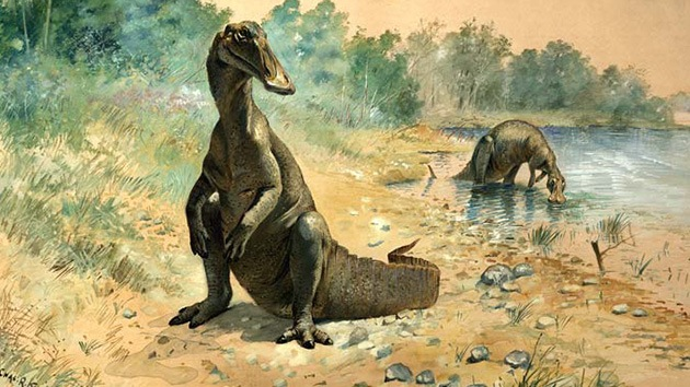 Los dinosaurios podrían haber alimentado a sus crías con 'leche'
