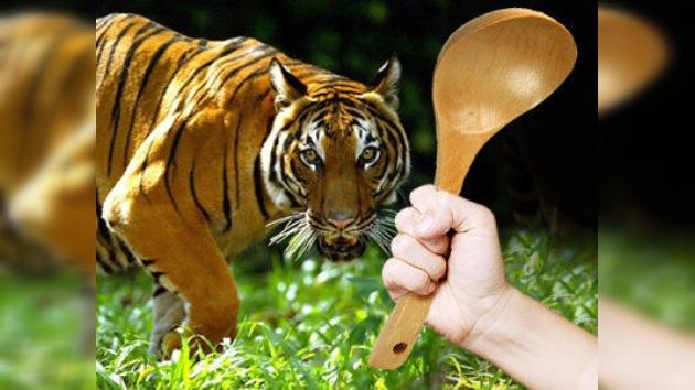 Un tigre no resistió el ataque de una mujer malaya enfurecida