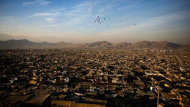 Aves suicidas: ¿La nueva arma de los talibanes en Afganistán?