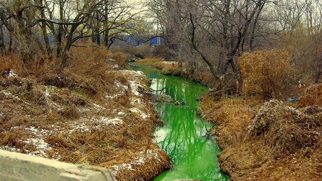 Fotos: Las aguas de un río ruso se tiñen de verde