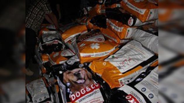 Envían alimento para perros como ayuda humanitaria para Trípoli