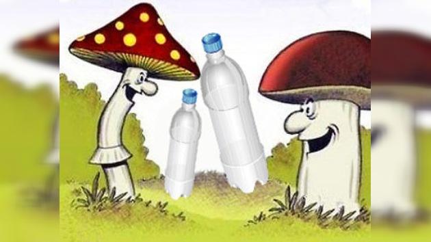 Descubren un hongo en la Amazonía que 'devora' plástico