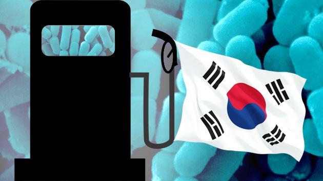 Científicos surcoreanos logran producir gasolina con bacterias intestinales